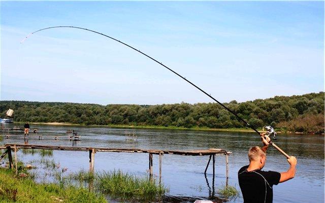 перец в прикормке для рыбалки