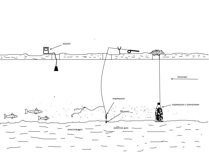 Ловля со льда на минифидер, Ловим Вместе
