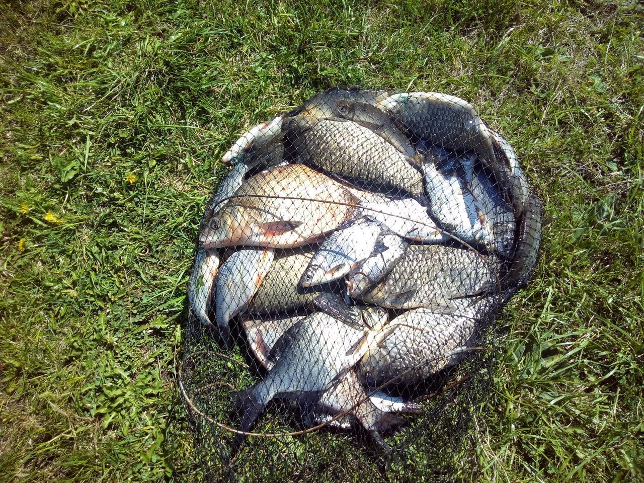 Краснодар рыбалка садки